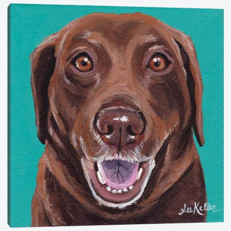 Chocolate Lab Turquoise Canvas Print #HHS377} by Hippie Hound Studios Art Print