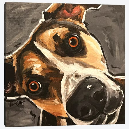 Close Up Dog Canvas Print #HHS379} by Hippie Hound Studios Canvas Art