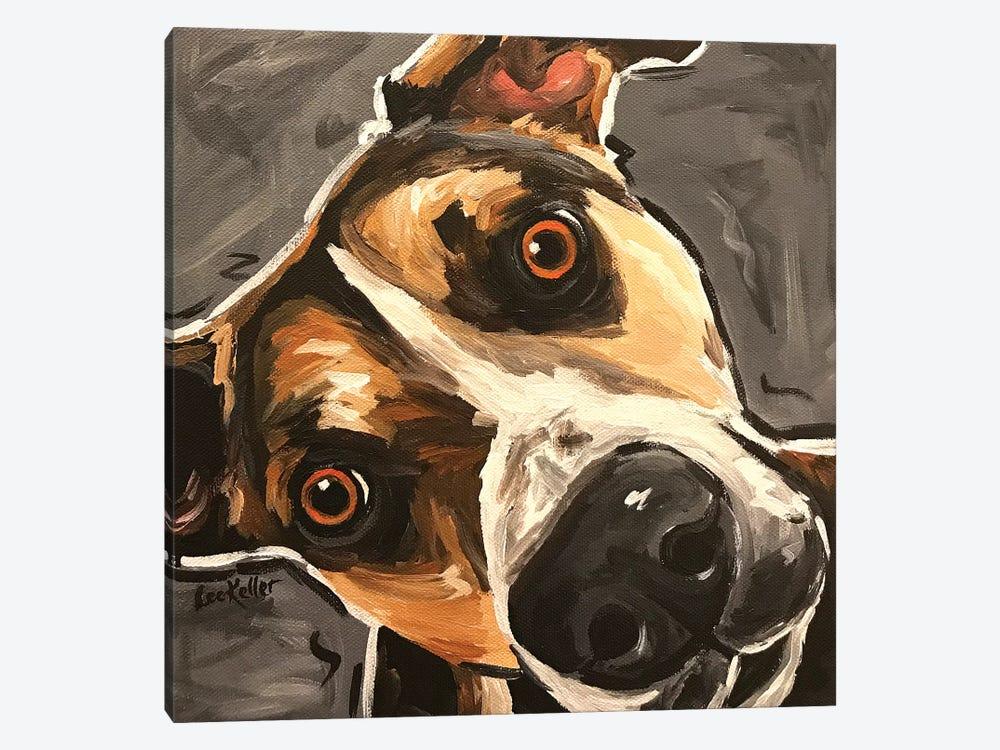 Close Up Dog by Hippie Hound Studios 1-piece Canvas Art Print
