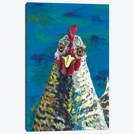 Colorful Barnrock Chicken Williaminia Canvas Print #HHS382} by Hippie Hound Studios Art Print