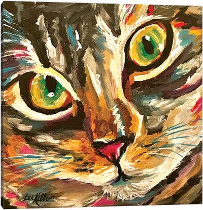 Colorful Cat Friady Canvas Art Print