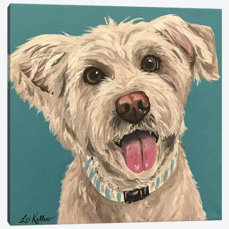 George Wheaten Terrier Canvas Print #HHS38} by Hippie Hound Studios Canvas Print