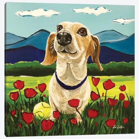 Dachshund Honey Canvas Print #HHS397} by Hippie Hound Studios Art Print