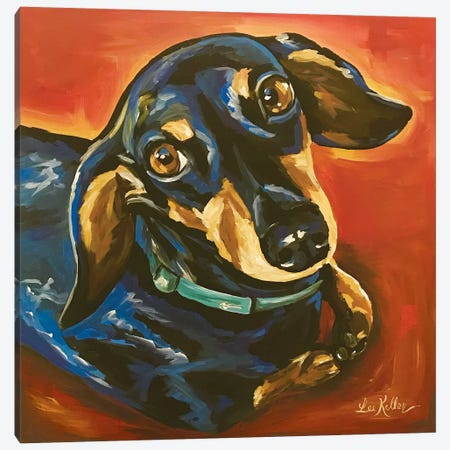 Dachshund Expressive Canvas Print #HHS398} by Hippie Hound Studios Canvas Wall Art