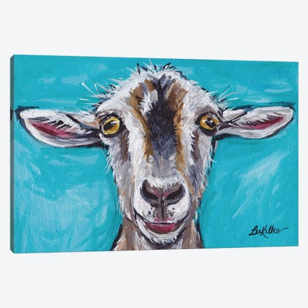 Gizmo The Goat Canvas Print #HHS39} by Hippie Hound Studios Canvas Print