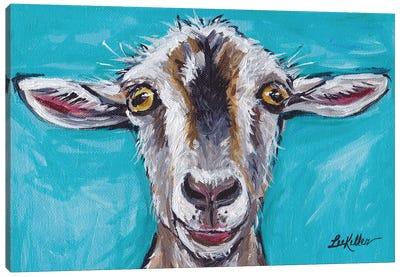 Gizmo The Goat Canvas Art Print