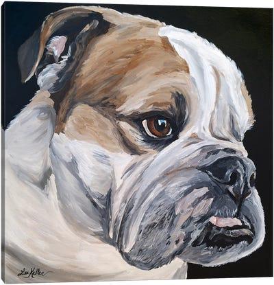 English Bulldog Jess Canvas Art Print