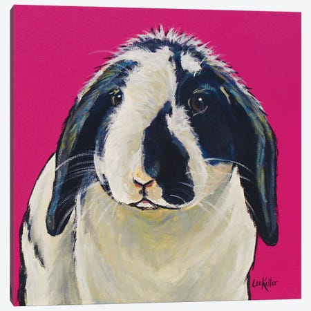 Flop Ear Bunny Susan Canvas Print #HHS405} by Hippie Hound Studios Canvas Art Print