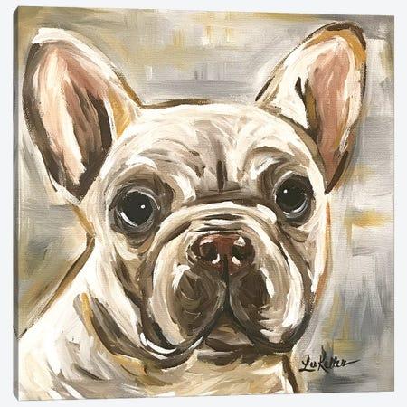 Frenchie In Neutrals Canvas Print #HHS408} by Hippie Hound Studios Canvas Artwork