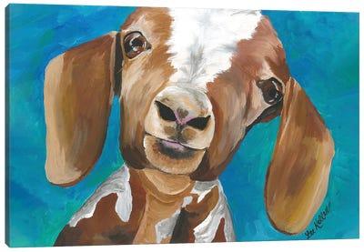 Goat Millie Canvas Art Print