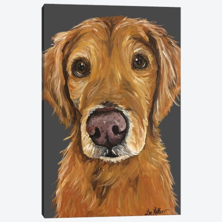 Golden Retriever On Gray Canvas Print #HHS417} by Hippie Hound Studios Canvas Wall Art