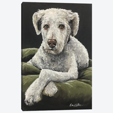 Golden Doodle Chillin' Canvas Print #HHS41} by Hippie Hound Studios Canvas Wall Art