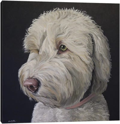 Goldendoodle White With Black Background Canvas Art Print