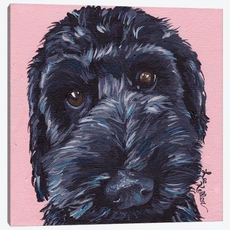 Labradoodle Dog II Canvas Print #HHS432} by Hippie Hound Studios Canvas Art Print