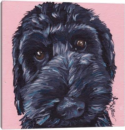 Labradoodle Dog II Canvas Art Print