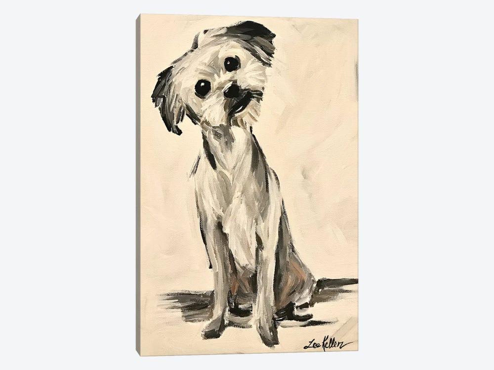 Little Terrier Dog Expressive by Hippie Hound Studios 1-piece Canvas Art