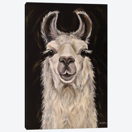 Llama Blanca Canvas Print #HHS434} by Hippie Hound Studios Canvas Wall Art