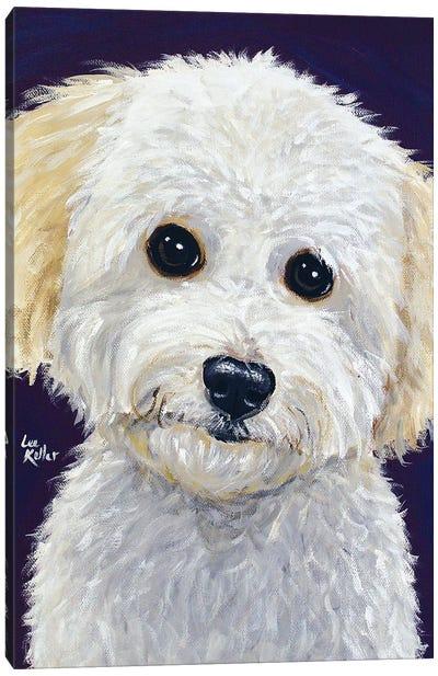 Pepper Mini Golden Doodle Canvas Art Print