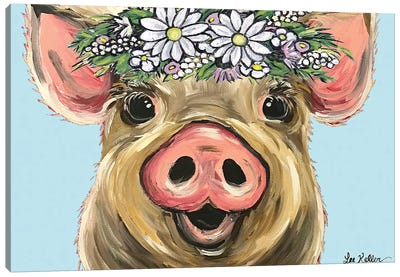 Pig Posey On Turquoise Daisies Canvas Art Print