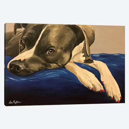 Pit Bull Nails Canvas Print #HHS451} by Hippie Hound Studios Canvas Art Print