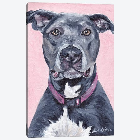 Pit Bull On Pink 3-Piece Canvas #HHS452} by Hippie Hound Studios Canvas Print