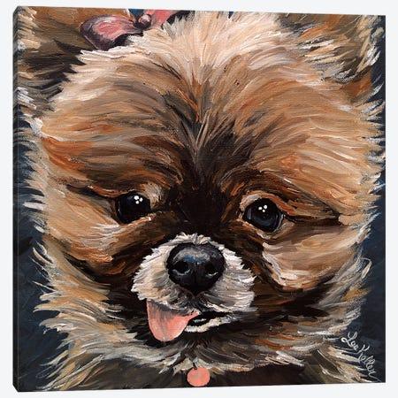 Pomeranian Mimi Canvas Print #HHS455} by Hippie Hound Studios Canvas Art