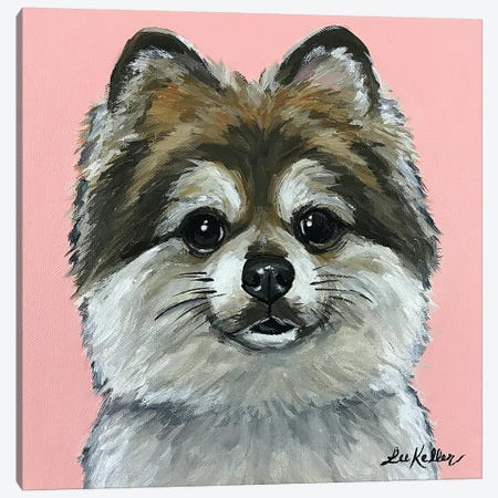 Pomeranian On Pink Canvas Print #HHS456} by Hippie Hound Studios Canvas Wall Art