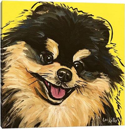 Pomeranian On Yellow Canvas Art Print