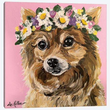 Pomeranian With Flowers Canvas Print #HHS458} by Hippie Hound Studios Art Print