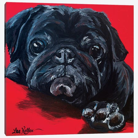 Pug On Red Canvas Print #HHS462} by Hippie Hound Studios Canvas Artwork
