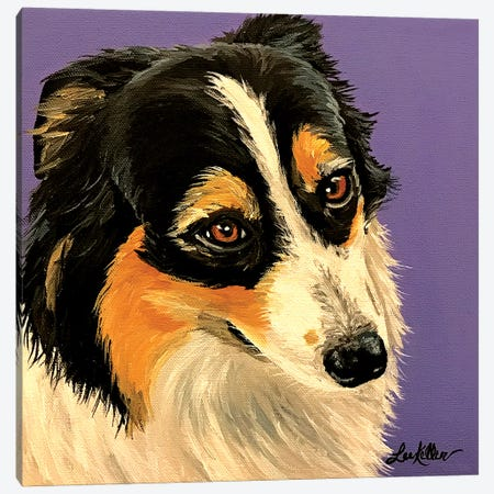 Shetland Sheepdog I Canvas Print #HHS473} by Hippie Hound Studios Art Print