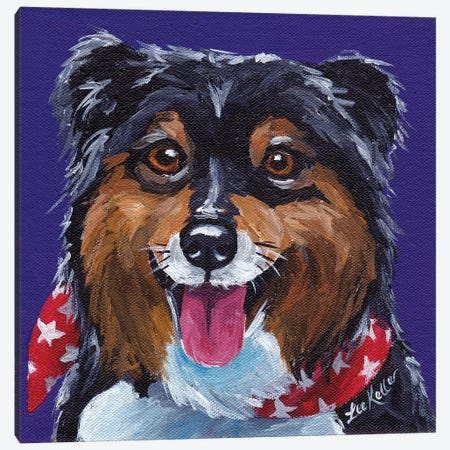 Shetland Sheepdog II Canvas Print #HHS474} by Hippie Hound Studios Canvas Wall Art