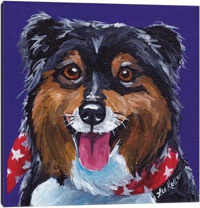 Shetland Sheepdog II Canvas Art Print