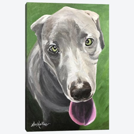 Great Dane  Canvas Print #HHS47} by Hippie Hound Studios Art Print