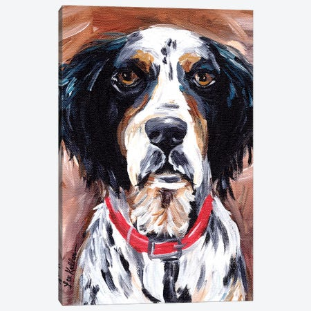 Springer Spaniel Canvas Print #HHS481} by Hippie Hound Studios Canvas Artwork