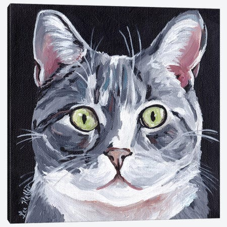 Tabby Cat On Black Canvas Print #HHS483} by Hippie Hound Studios Canvas Art