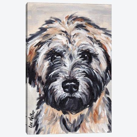 Wheaten Terrier II 3-Piece Canvas #HHS488} by Hippie Hound Studios Canvas Wall Art