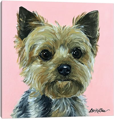 Yorkie Pink Canvas Art Print