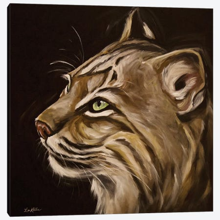 Frankie The Bobcat Canvas Print #HHS496} by Hippie Hound Studios Canvas Artwork