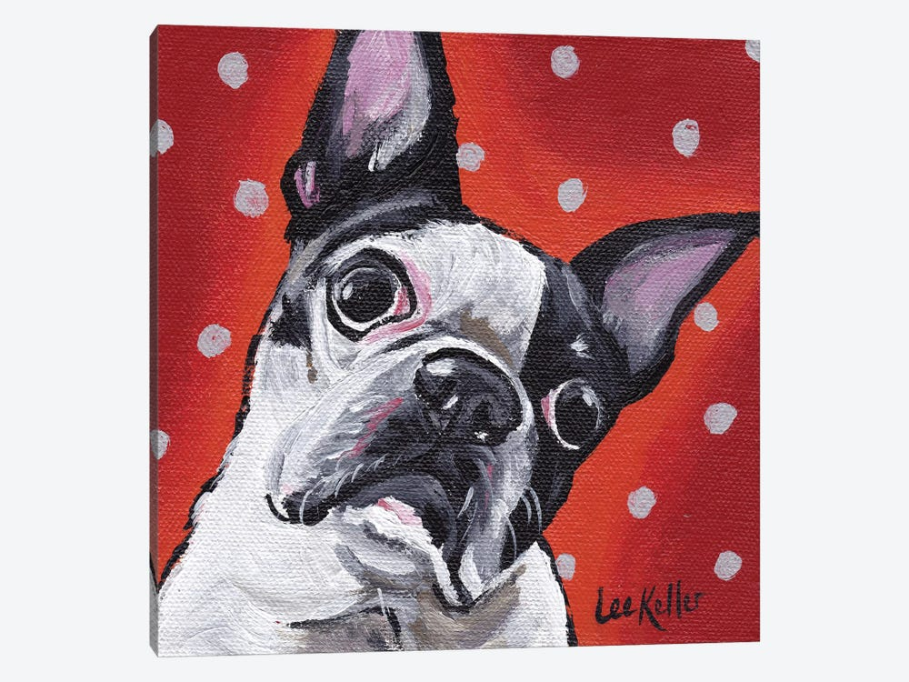 Boston Terrier On Polka Dots by Hippie Hound Studios 1-piece Canvas Wall Art