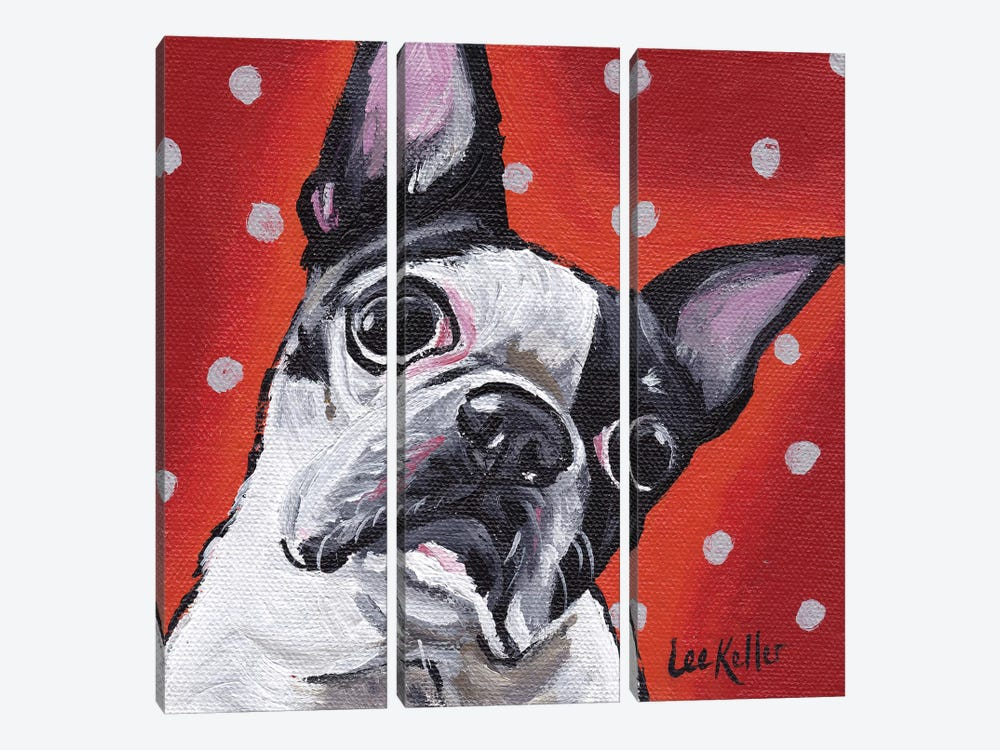 Boston Terrier On Polka Dots by Hippie Hound Studios 3-piece Canvas Wall Art