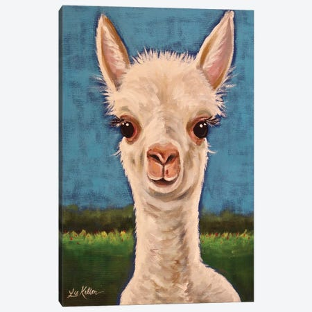 Gus The Alpaca Cria I Canvas Print #HHS507} by Hippie Hound Studios Canvas Wall Art