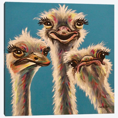 'Always, Ostrich Edition' Canvas Print #HHS511} by Hippie Hound Studios Canvas Wall Art