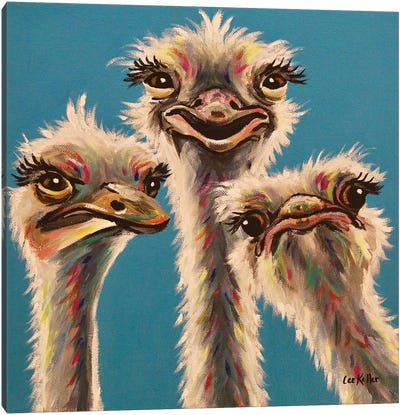 'Always, Ostrich Edition' Canvas Art Print