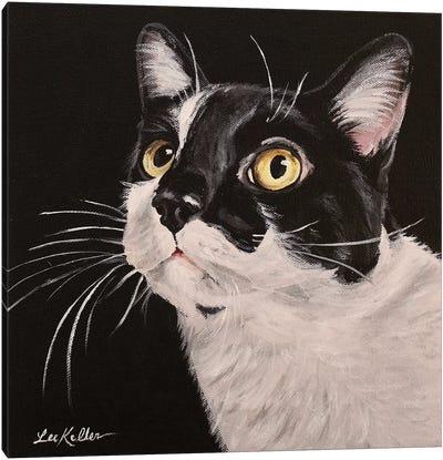 Lex Canvas Art Print