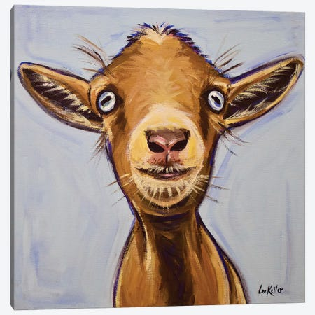 Poundcake The Goat Canvas Print #HHS520} by Hippie Hound Studios Art Print