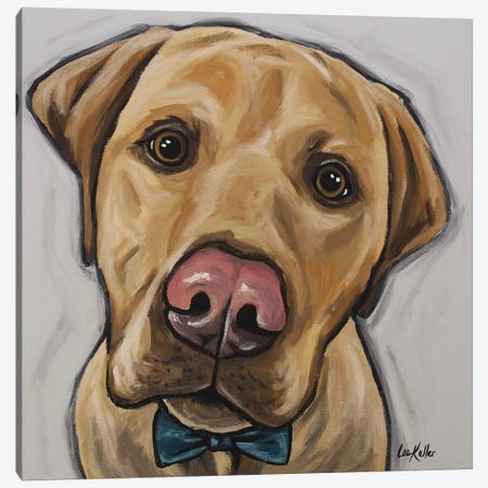 Leroy The Lab With Bowtie Canvas Print #HHS523} by Hippie Hound Studios Canvas Art Print