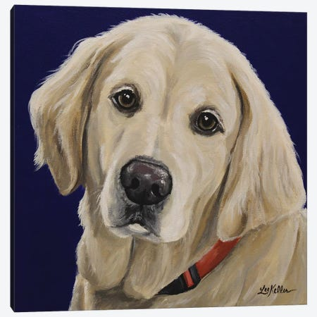 Cotton English Golden Retriever Canvas Print #HHS525} by Hippie Hound Studios Canvas Artwork
