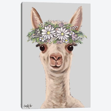 Gus The Alpaca Cria II Canvas Print #HHS529} by Hippie Hound Studios Canvas Print