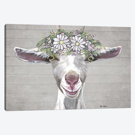 Patsy The Goat With Daisy Flower Crown Canvas Print #HHS532} by Hippie Hound Studios Canvas Wall Art